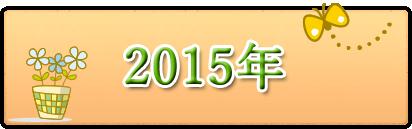 2015年月別チラシ